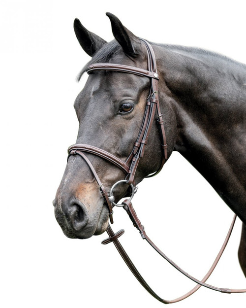 Prestige Leather Raised Bridle with Stiching:  E37