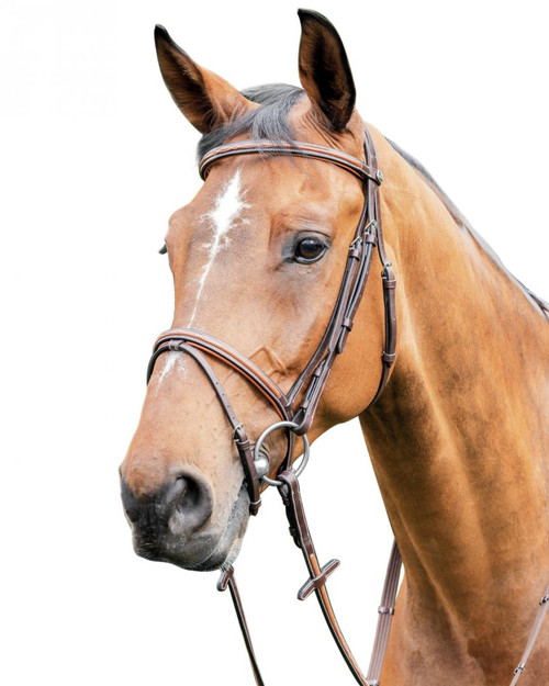 Prestige Thin Leather Bridle with Soft Leather Inserts: E87