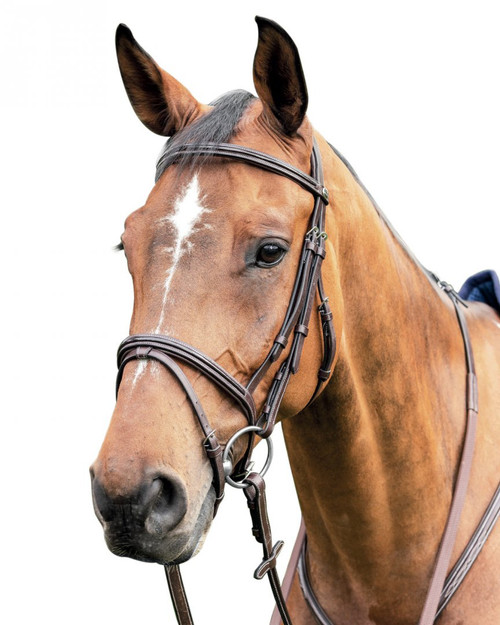 Prestige Thin Leather Bridle with Patent Leather Inserts: E91