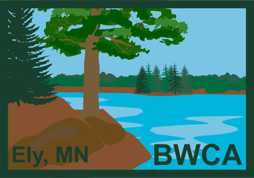 Patch - BWCA Ely, MN Tree On the Shoreline -
