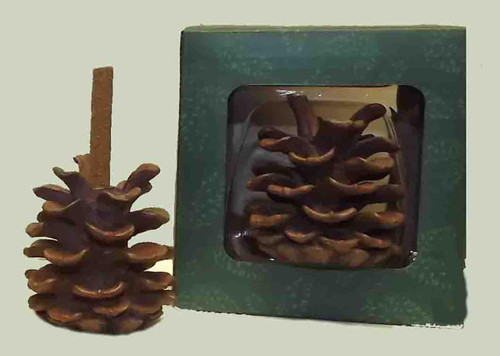 Paine's Pine Cone Incense Holder -