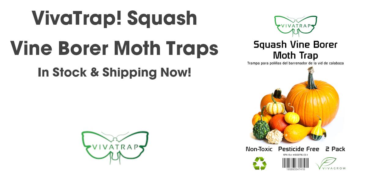 VivaTrap Squash Vine Borer Traps are in stock and ship free at VivaGrow.com