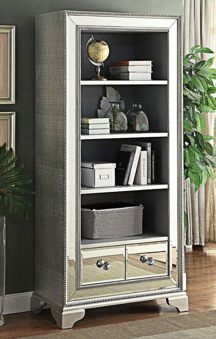 Luxury Mirrored Bookcase