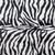 Zebra Black and white