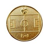 Gold Flip Coin
