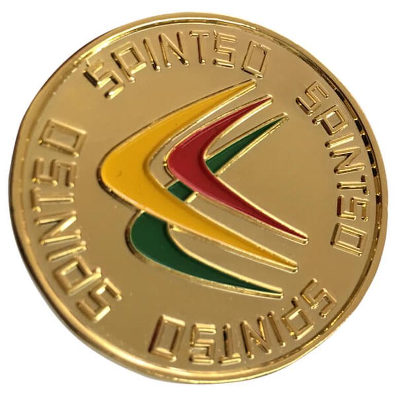 Spintso Gold Flip Coin