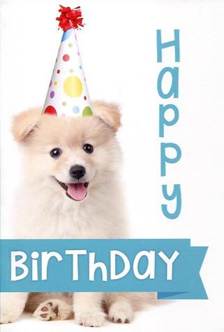Birthday #173