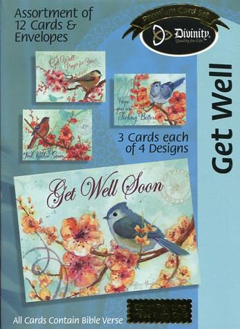 Bird get well cards