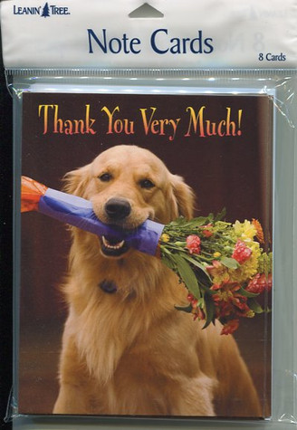 Blank Thank You Notecards