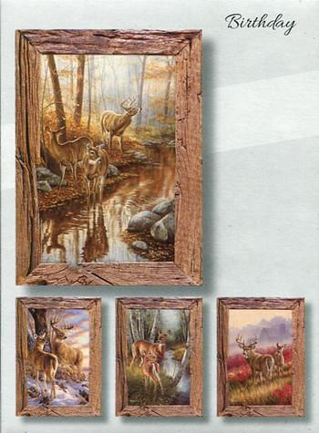 Inspirational men's birthday cards - whitetail deer