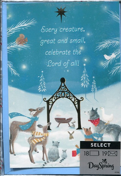 Dayspring Christmas Cards.Every Creature Celebrate