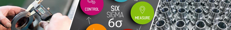 Six Sigma Labels