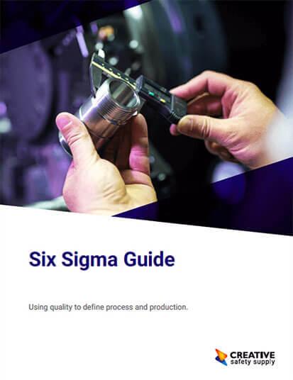 Free Six Sigma Guide