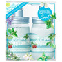 Amino Mason Smooth Seasonal Collection Vol.5 in Mint Blossom Bouquet