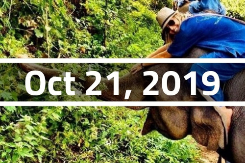 Thailand, Chiang Mai - TEFL Course Deposit - October 21, 2019