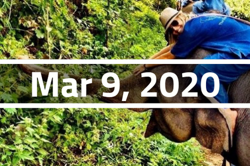 Thailand, Chiang Mai - TEFL Course Deposit - March 9 - April 3, 2020