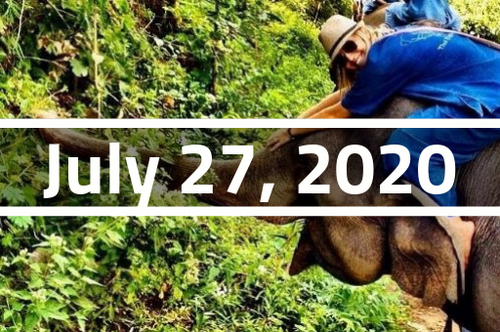 Thailand, Chiang Mai - TEFL Course Deposit - July 27 - August 21, 2020