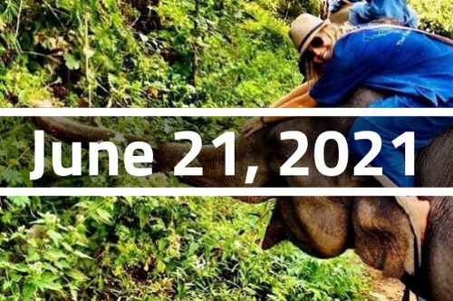 Thailand, Chiang Mai - TEFL Course Deposit - June 21 - July 16, 2021