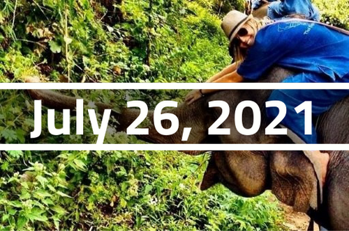 Thailand, Chiang Mai - TEFL Course Deposit - July 26 - August 20, 2021