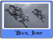 EMB BUCK JUMP Dance/box/shampoo bags only