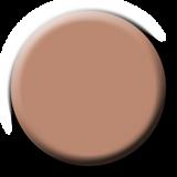 Light Elegance  Sandman Tan P+ Color Gel Polish Swatch