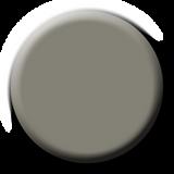 LE Khakis and Cameras P+ Color Gel Polish 15ml