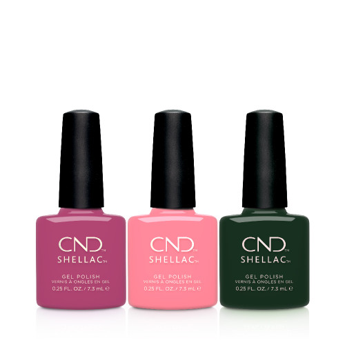 Shellac Prismatic collection