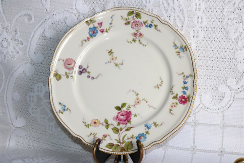 Castleton China Sunnyvale Dinner Plate