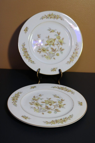 Style House Fine China Indore Dinner Plate