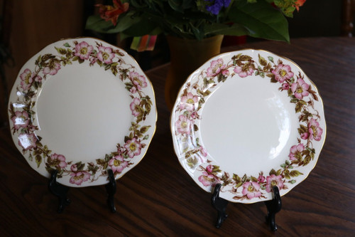 Adderley Bone China Briar Rose Salad Plate