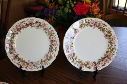 Adderley Bone China Briar Rose Dinner Plate