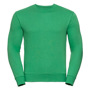 Set-in Sleeve Sweatshirt - ADULT