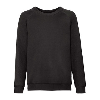 Classic Raglan Sweatshirt - ADULT