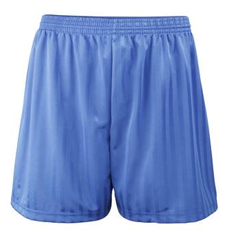 """Shadow Stripe PE Shorts - Royal 30-42"""""""