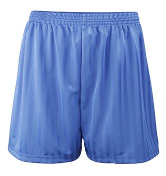"""Shadow Stripe PE Shorts - Royal 18-28"""""""