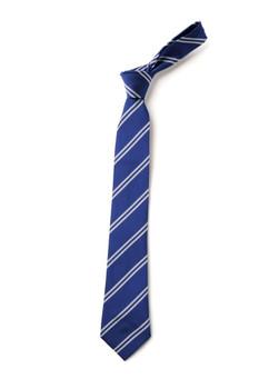 Northwood Primary Tie