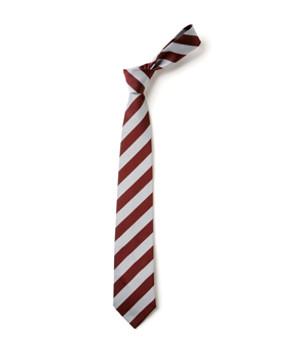 Carisbrooke Primary Tie