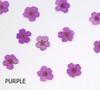 Purple Coloured Mini Dried Flowers for Nail Art