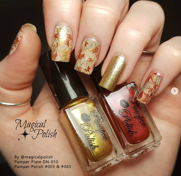 Example of Pamper Plates Professional Nail Stamping Plates - Design #10 (Autumn Leaves, Penguins, Dove, Vines & Geometrics)