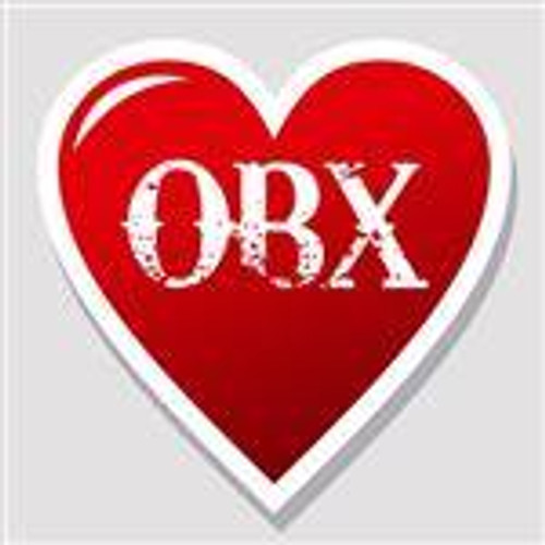 "I Love the OBX Sticker 4"" x 4"""