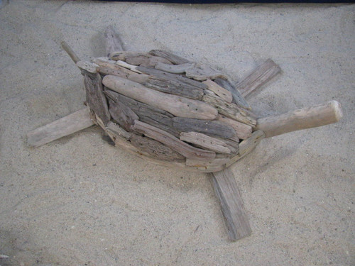 Driftwood Turtle Small Tabletop Coastal Beach Outer Banks Decor OBX Weathered Natural Sea Turtle