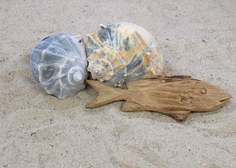 Driftwood Fish Ornament Christmas Tree Outer Banks Beach Rustic Decor