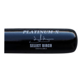 Platinum X