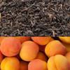 Apricot Flavored Oolong Tea