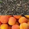 Apricot Flavored White Tea