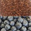 Blueberry Honeybush Tea