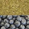 Blueberry Yerba Mate