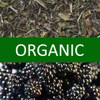 Organic Blackberry White Tea