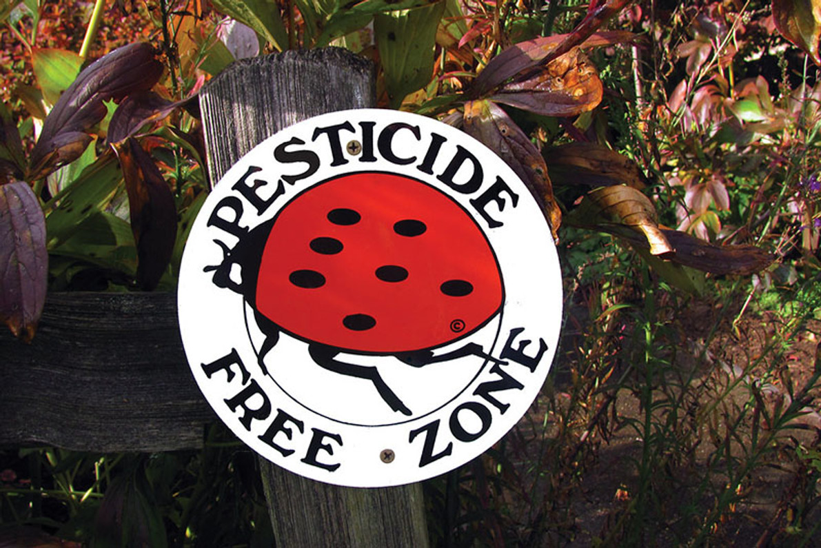 Protecting Pollinators from Pesticides