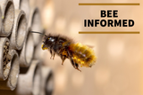 Bee Informed: Citizen Science, Pollinator-Friendly Solar, and Bee Better Certification